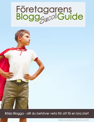 """Bonusmaterial: Effektiv Bloggning – Hur man sätter upp ett effektivt bloggsystem Bloggplanerare - allt du behöver för att planera dina inlägg och undvika """"hjälp vad ska jag skriva"""" situationer Blogg check list – allt du behöver för att """"blogga på rätt sätt"""" De vanligaste blogg felen och hur du undviker dem – PDF Nyhetsbrev – hur använder man ett nyhetsbrev på ett effektivt sätt? PDF Gästblogga – hur kan det hjälpa mitt företag och bör jag lägga energi på det? PDF WordPress Plugins – extra pdf Gratis tillgång till Easy Title Templates - skapa unika bilder för din blogg!"""